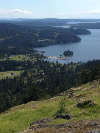 Turtleback Hike